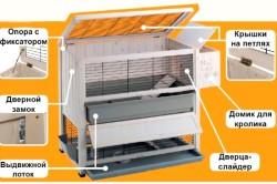 Устройство клетки для содержания декоративного кролика