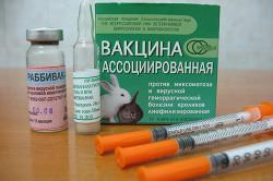 Вакцины для кроликов