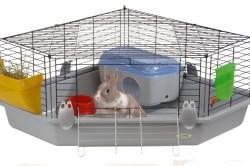 Уход за клеткой кролика