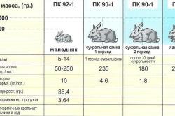 Содержание кроликов в зависимости от возраста