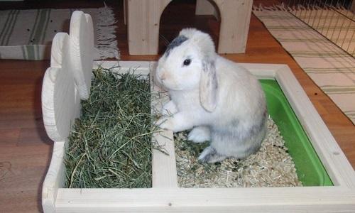 Самодельный сенник для кроликов