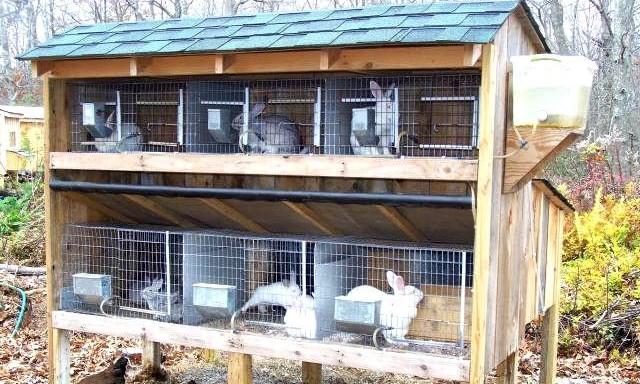 Фото крольчатников своими руками