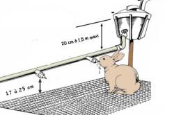 Схема поилки для кроликов