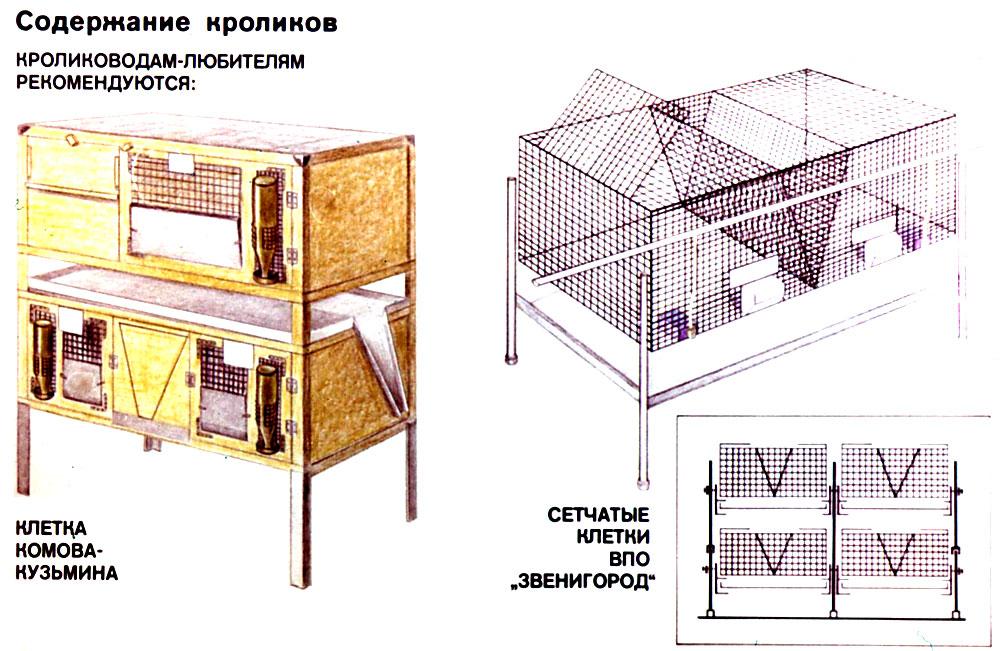 Инструкция в картинках как разводить кроликов зря здесь